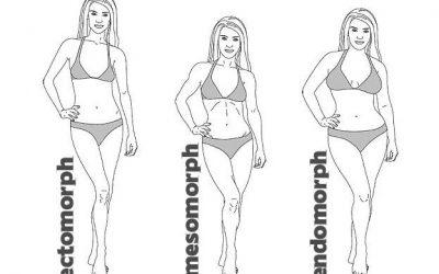 Testalkat típusok és edzésük
